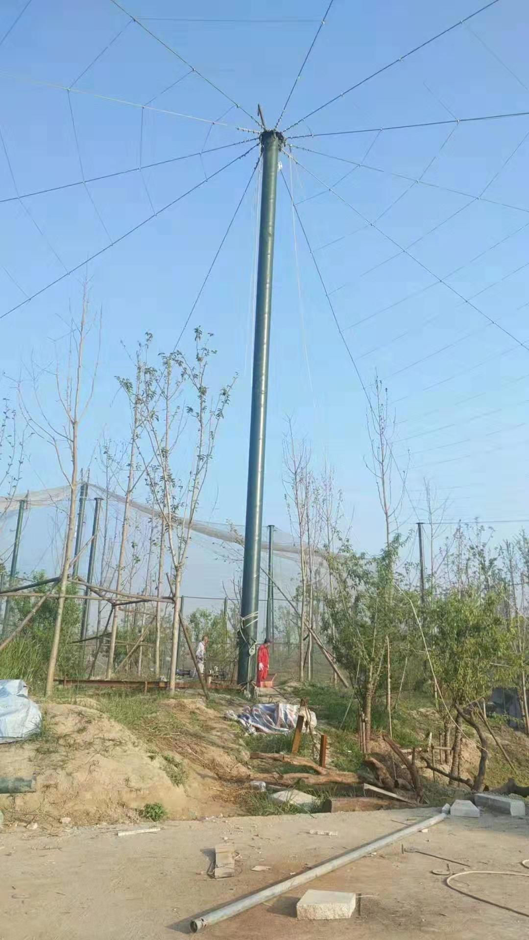 山西鸟语林网改建