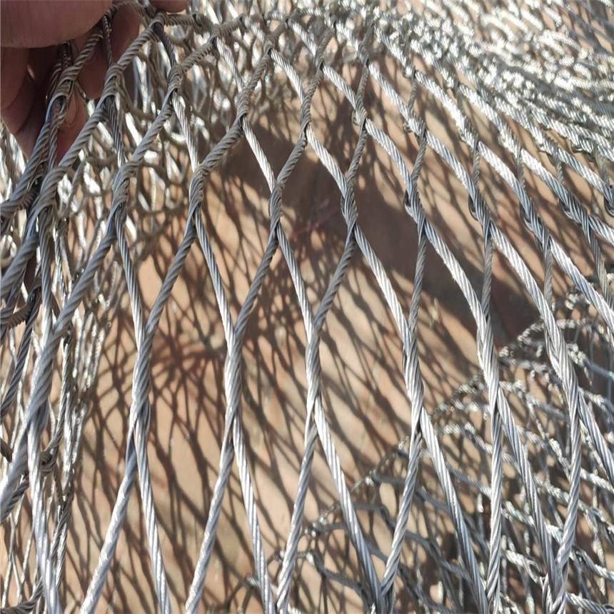 不锈钢绳网 编织网